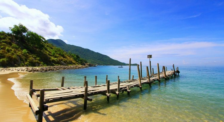 Cham island 1 day tour with the best price