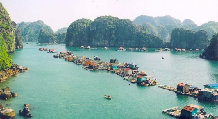 Cat Ba tour 2 days 1 night