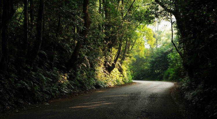 Đường lên vườn quốc gia Ba Vì