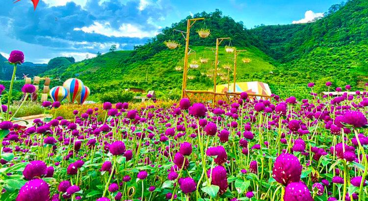 Vẻ đẹp của khu du lịch Happy Land Moc Chau
