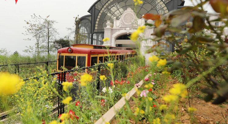Chiêm ngưỡng vẻ đẹp của tàu hỏa Mường Hoa Sapa